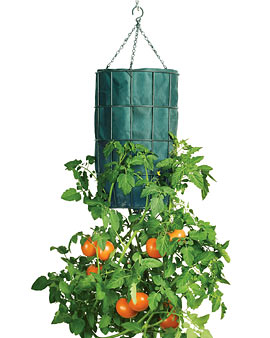 Gardeners Revolution Tomato Planter