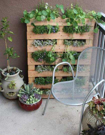 Crate Living Wall Planter