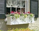Windsor windowbox