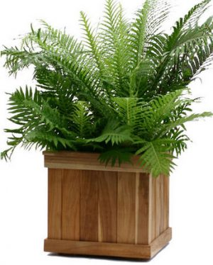 Teak Wood Planter