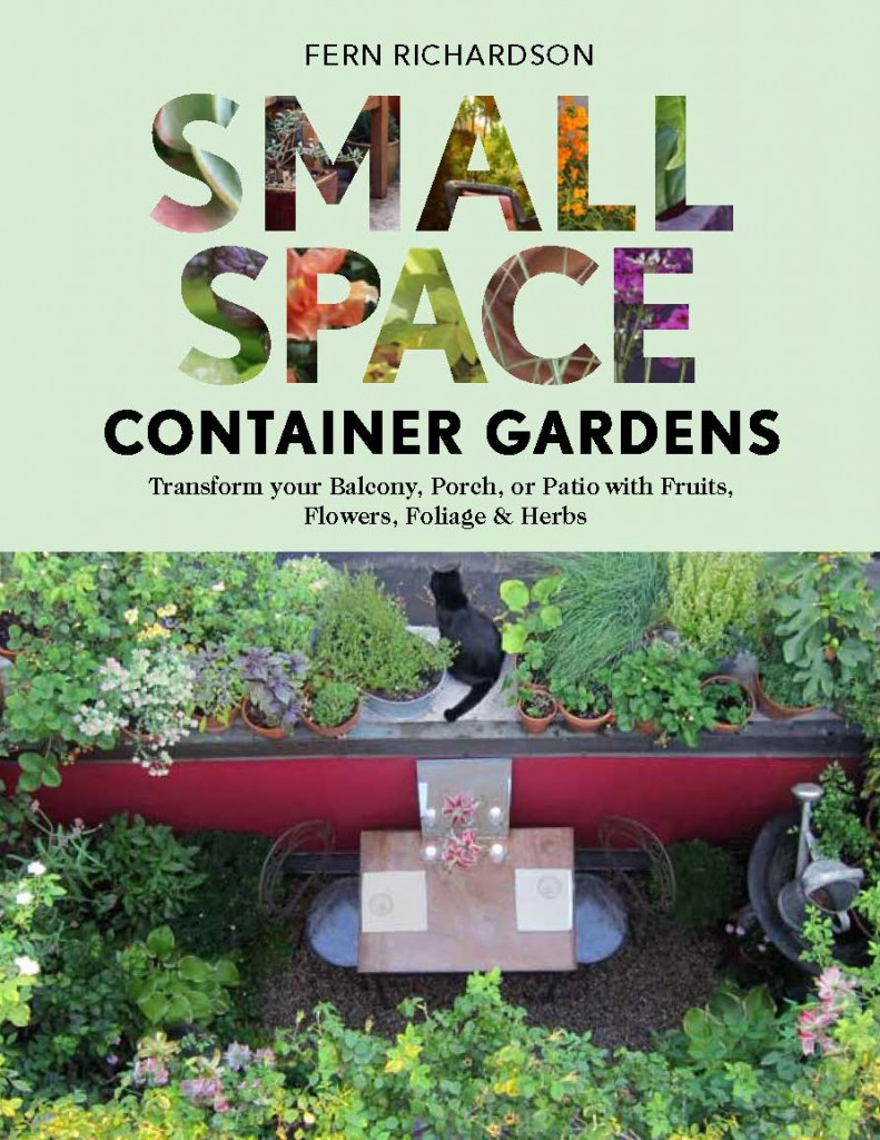 Small Spacce Container Gardens
