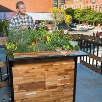 Planter Bar