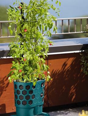 Gardener's Revolution Tomato Planter
